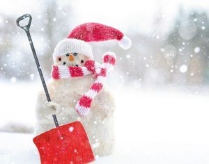 Stay On Top Of Snow Maintenance This Winter!