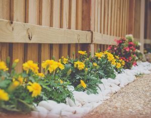 Effective Landscaping for Your HOA