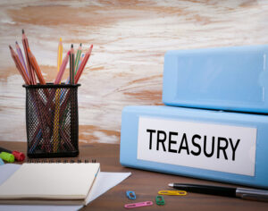 Understanding the Board Treasurer Role
